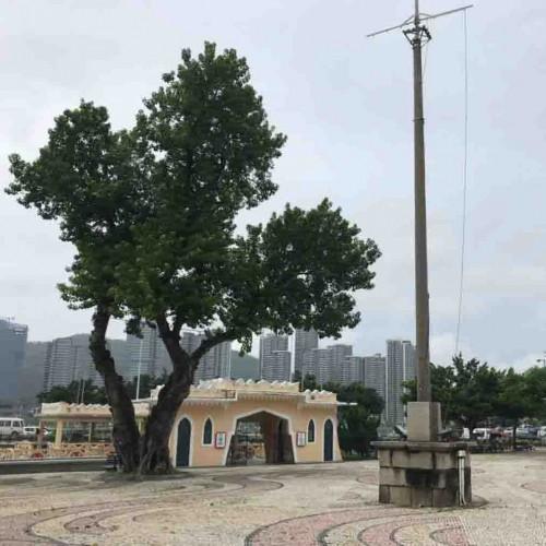 Barra Square